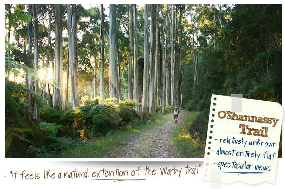 O'Shannassy Trail – Warburton